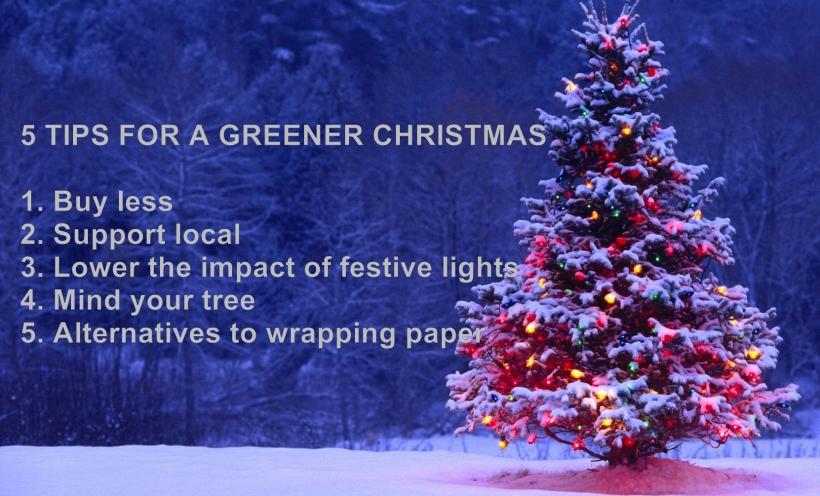 5 tips for greener christmas