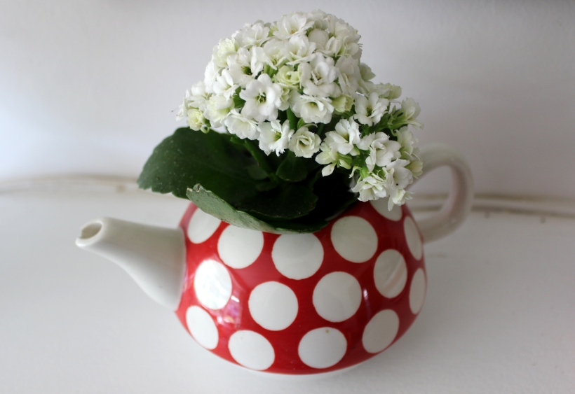 Flowers in the teapot - so pretty