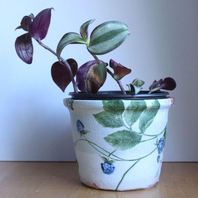 OrganisingChaosBlog - how to cover a pot