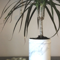 DIY MARBLE FLOWER POTS