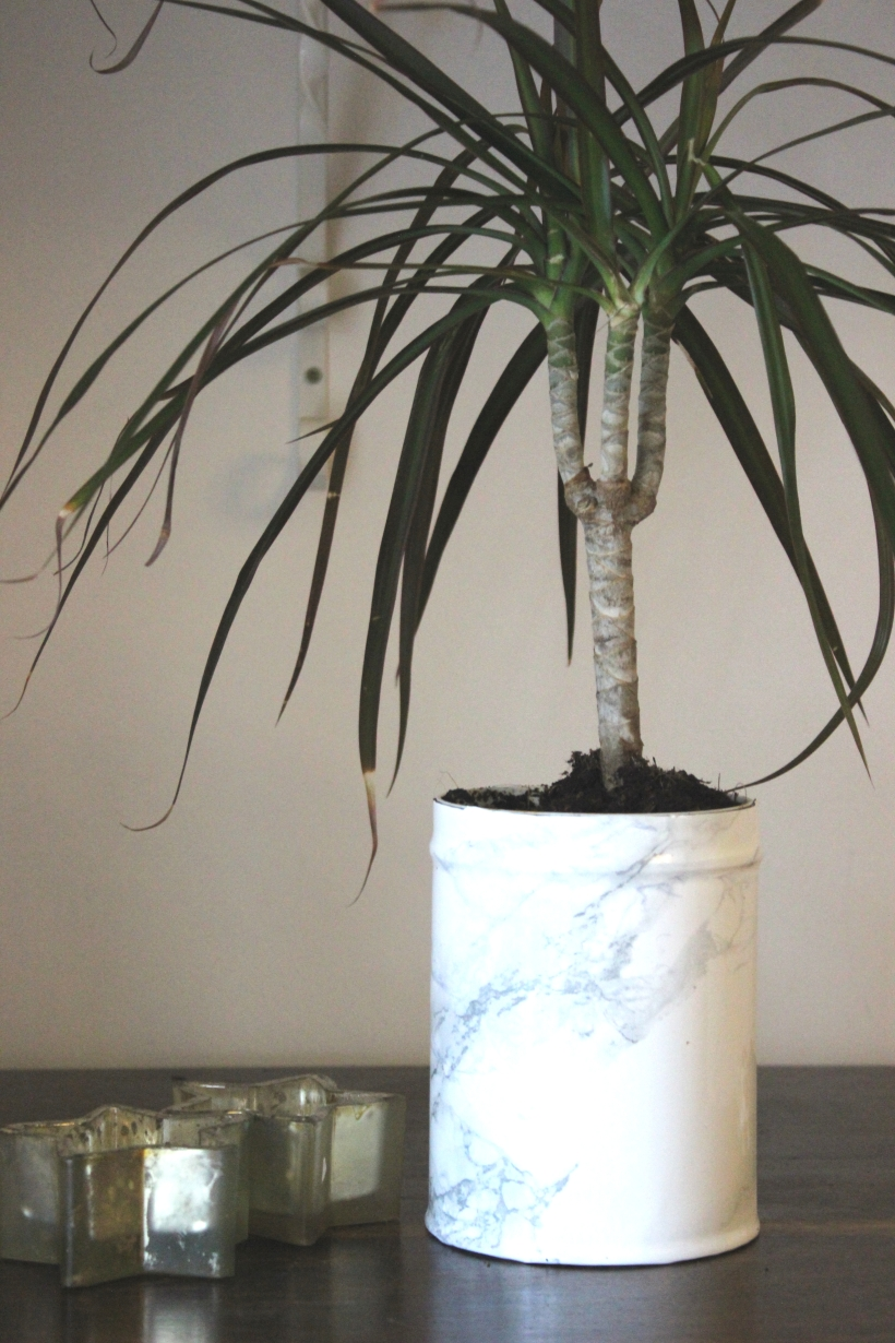 OrganisingChaosBlog - Make a marble flower pot 3