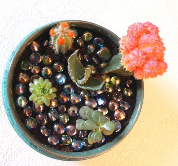 Decorating with plants - A bowl of cacti